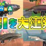 【あつ森】激レア魚が超大漁!奇跡の釣り竿で神引き大連発!ゆっくり達のあつまれどうぶつの森 part24