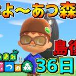 【あつ森】島復旧36日目色々遊ぶ!!【あつまれどうぶつの森】