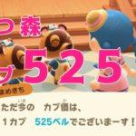 【 参加型 】参加無料! あつ森カブ525ベル