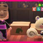 【あつまれ どうぶつの森】『ジュンとの別れ』(あつ森)【Animal Crossing New Horizons】豆じィの動画