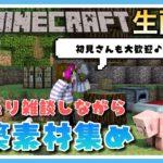 【マイクラ生配信】雑談しながらまったり作業~【マインクラフト】【Minecraft】【女性ゲーム実況者】【TAMAchan】