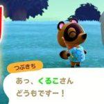 【あつ森】いよいよ本格的に第二の無人島生活がスタート!いったいどういう島にしようかな?#6【しゃちくるみ/あつまれどうぶつの森/Animal Crossing/シュガートース島/ウホウホ島】