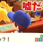 【あつ森】任天堂公式から「あつ森について」とんでもないことが発表される【あつまれどうぶつの森/Animal Crossing/無料アプデ/夢見の館/夢訪問/最新アプデ/花火大会】