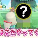 【あつ森】今日もいつも通り離島ガチャをしていたら・・・ #28【しゃちくるみ/あつまれどうぶつの森/Animal Crossing/シュガートース島/くるみ/しゃちく/ちゃちゃまる/ジャック/ラムネ】