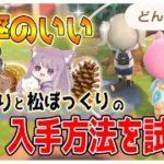 【あつ森】噂の最高率で「どんぐりと松ぼっくり入手方法」を試す!【あつまれどうぶつの森/Animal Crossing】【実況/くるみ/しゃちく/しゃちくるみ/シュガートース島/攻略】