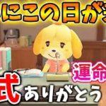 【あつ森】公式ありがとう!あつ森ユーザーにとっての運命の日。みんなの結果はどうだった?【あつまれどうぶつの森/Animal Crossing/amiiboカード/抽選結果/ちゃちゃまる/ジャック】