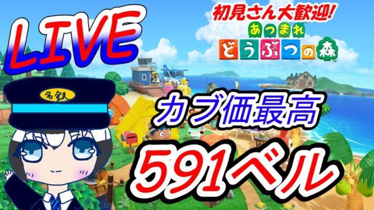 【あつ森】カブ価最高591ベル 参加型! 島無料開放中!! 初見さん大歓迎