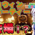 【あつ森】かぼちゃ家具いっぱい!ハロウィンパーティー会場完成!?島民代表(笑)のあつまれどうぶつの森#84【ゆっくり実況】