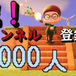 【あつ森】祝!チャンネル登録者1000人突破記念配信!『あつまれどうぶつの森』