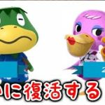 【あつ森】海外リーク情報で「かっぺい・ぺりお」が今後のアプデで復活予定だと!?【あつまれどうぶつの森/Animal Crossing】