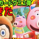 【快挙】あつ森カードグミ第二弾で豚がカード化wwwww【あつまれどうぶつの森】