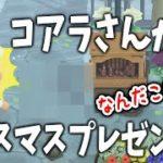 【あつ森】衝撃的なプレゼントww コアラさんからクリスマスプレゼントから送られてきたけど中身は・・・・・・!?【あつまれどうぶつの森/Animal Crossing/アップデート/冬アプデ】