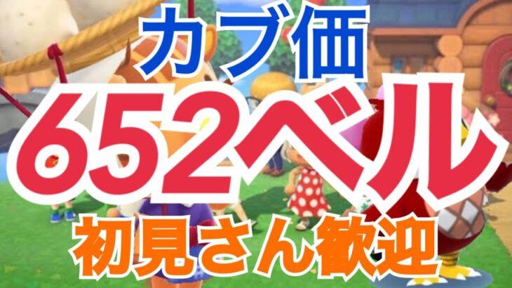 【あつ森】ライブ参加型 カブ633ベル島580ベルなど厳選 かぶ手数料なし
