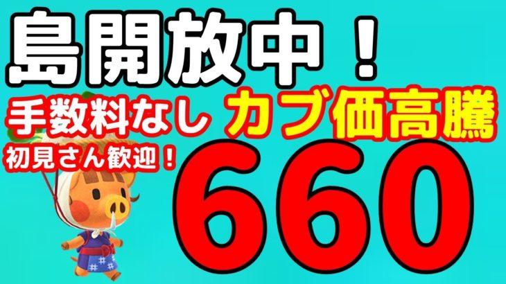 【あつ森】初見さん歓迎です 「660ベル」の島開放中!【カブ価】【あつ森 参加型】