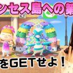 【あつ森カーニバル】ディズニープリンセス島にはあの◯◯◯◯家具が絶対欲しい♡